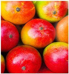 Fruits et légumes exotiques frais